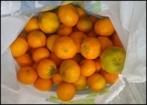 Angelic Oranges