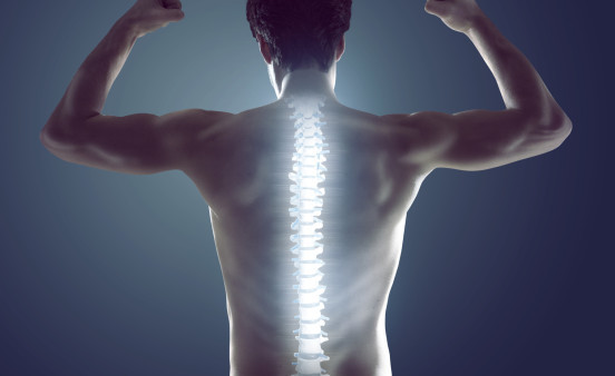 A healthy spine?